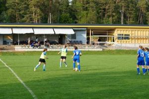 SGM SV Pfrondorf - VfL Sindelfingen (C) (24.05.2019)